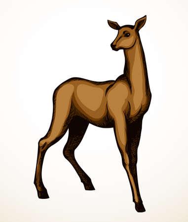 Cute elegant spot adult hoof elk goat dama beast muzzle look. Outline black hand drawn red impala body emblem design picture retro beauty art zoology contour print style. Closeup view paper text space
