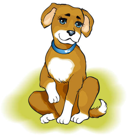Vector drawing. Playful puppy beige color on the green grass