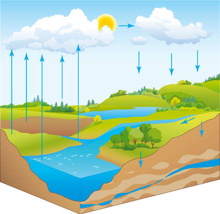 Vector schematic representation of the water cycle in nature Illustration