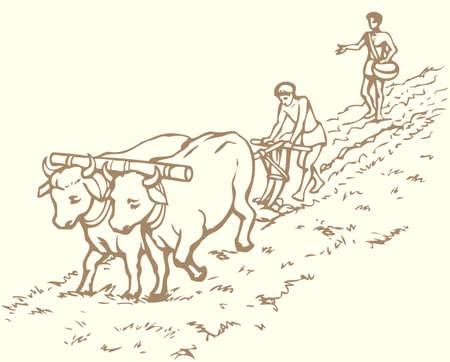 agriculture, ancient, animal, antique, bovine, bull, cattle, countryside, cow, cultivate, drawing, earth, equipment, farm, farming, farmland, field, furrow, ground, historic, history, illustration, indian, job, labor, land, landscape, man, nature, old, ox, peasant, plantation, planting, plow, plow, preparation, primitive, retro, rural, slave, soil, sow, spring, team, teamwork, vector, work, worker, yoke