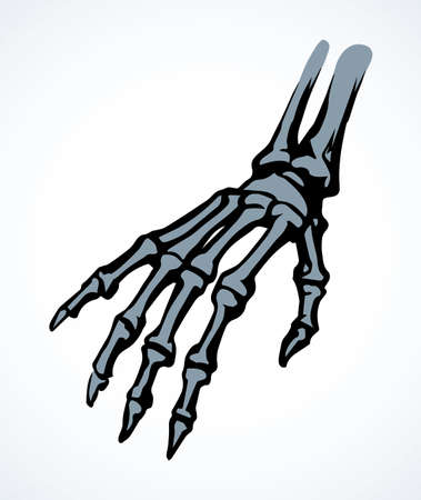 Healthy distal limb structure element concept on white text space. Black line drawn carpal phalanx organ diagnostic treat care   emblem in art vintage cartoon style. Abstract anterior top scan view