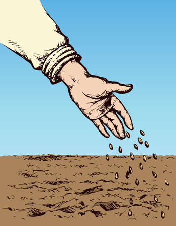 Old person's palm manual give scatter small corn plant on fertile humus eco area. Freehand bright color drawn picture symbol sketch in art doodle style. Closeup view with space for text on sky