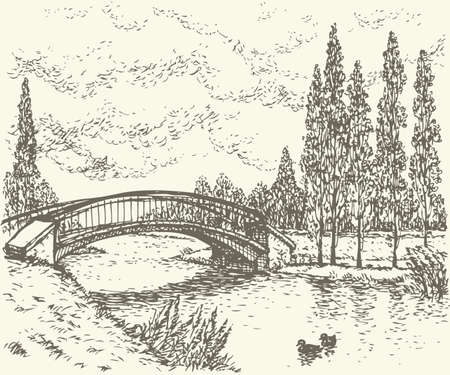 Vector landscape. Sketch of a quiet corner of the park with a bridge over river and poplars along the road 向量圖像