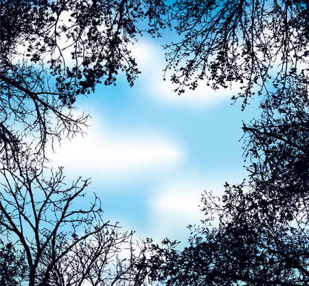 Vector frame in the form of the lumen of interwoven branches of trees against the blue sky with white clouds 向量圖像