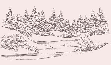 Vector graphic sketch. Winter forest landscape with snow-covered fir trees and bushes on the hills near the frozen river