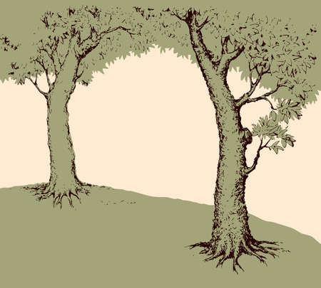 Shadow of two old oaks on wide glade field isolated on white backdrop. Freehand line black ink hand drawn picture sketchy in art scribble retro style pen on paper with space for text on pink sky