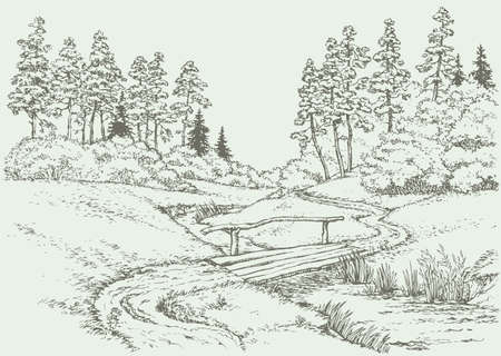 Vector landscape. The path leading through with boards bridge over the creek, surrounded by summer meadow and pine forest