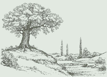 Vector landscape. Mighty oak tree grows on top of a hill above the river valley 向量圖像