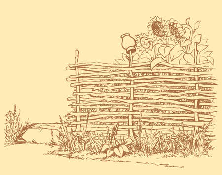 Vector outline landscape. Crock on an old fence of twigs along the village street, shields the yard with flowering sunflowers