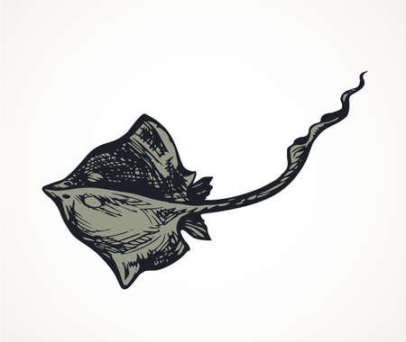Big danger flat Electric devil shark on white backdrop. Outline dark ink hand drawn zoo pet pictogram logotype emblem sketchy in art vintage engrave doodle style pen on paper space for text. Top view 矢量图像