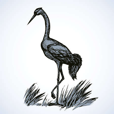 Beautiful young gallant shadoof walking among pond grass. Vector ancient monochrome freehand black ink drawn backdrop sketchy in art naive doodle style pen on paper. Side view with space for text