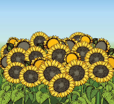 Cute large golden oil helianthus head isolated on blue heaven scenery backdrop. Bright gold color hand drawn eco image sign icon in modern art cartoon style on space for text. Scenic old village view 矢量图像