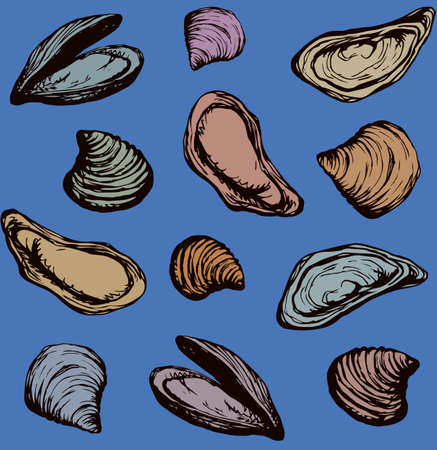 Big fresh perl Ostreidae mollusc on blue backdrop. Outline black ink hand drawn french diet delicacy dining icon sign design sketchy in retro art cartoon doodle engraved style pen on paper  イラスト・ベクター素材