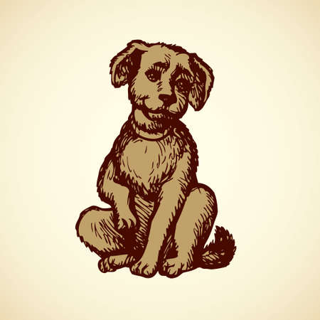 Small beige puppy on floor wagging his tail isolated on white backdrop. Freehand outline ink hand drawn picture sketchy in art doodle retro style pen on paper