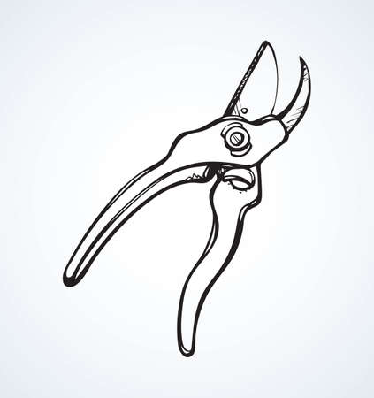 Old steel lop mower plier on white space for text. Outline black ink drawn sharp tree twig grow snip object pictogram in clip art vintage doodle cartoon engrave style pen on paper. Closeup view