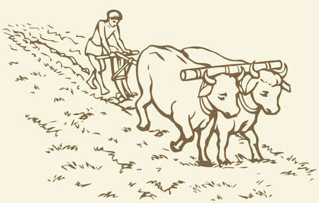 Vector picture. Primitive agriculture ancient Asian and African world: Egypt, Assyria, Babylon, India, China. One farmer plows the land plot pulled on a pair of oxen. Second sows grain plowed field Çizim