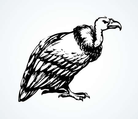 Old griffin gryphus eagle on light sky backdrop. Freehand outline black ink hand drawn aegypius claw pictogram design in retro art doodle engrave print style pen on paper text space. Closeup view