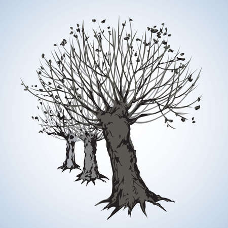 Big cut off deciduous oaktree isolated on white parkway backdrop. Freehand linear black ink hand drawn picture sketchy in art retro doodle graphic style pen on paper with space for text on sky border