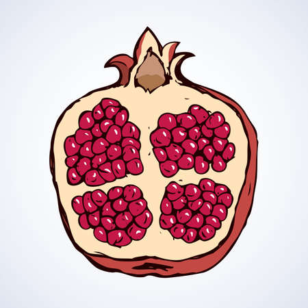 Promagnet fruit illustration background.