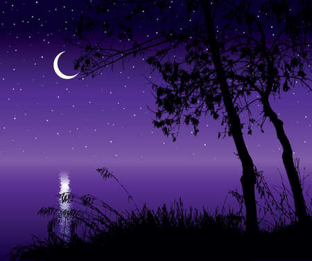 Romantic outdoor eco fall hill scenic view white crescent text space backdrop. Hand drawn old lush bare dry beech bush shrub grove thicket starry pond scene retro art print purple moonlight style Иллюстрация