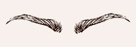 Modern thin big male eyelash light backdrop. Freehand linear dark ink hand drawn emblem insignia sketchy in retro artistic scribble etched print stylize pen on paper space for text. Close up view
