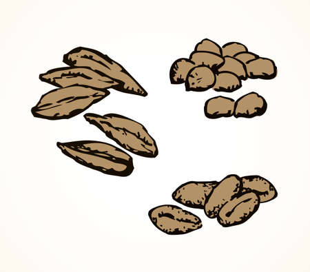 Ripe dry small spelt pearl herb group isolated on white paper. Outline black hand drawn rustic vegan raw peel shell husk nut feed logo sign icon symbol in vintage art cartoon style. Closeup macro view