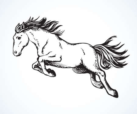 Gorgeous pride white courser smartly rear up on ranch race paddock. Freehand outline black ink pen hand drawn andalusian ride beast logo emblem pictogram design. Art doodle retro paper cartoon style