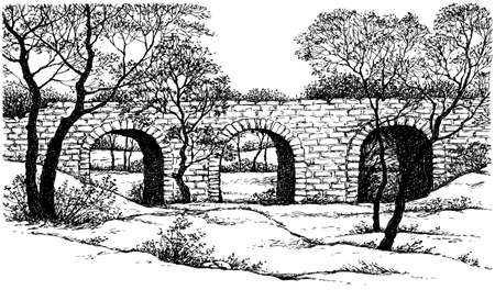 Age high urban arc path way cold frost yard pond bank scene outline black ink pen hand drawn brook paper art retro doodle line style. Scenic dusk tall wild maple plant creek view white sky text space