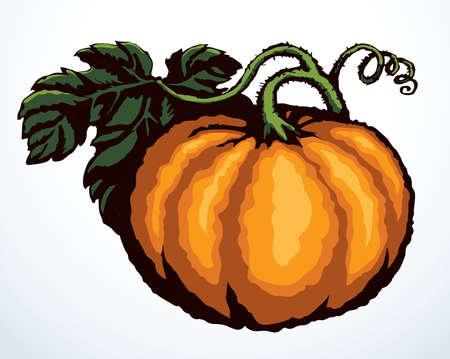 Outline bright orange color hand drawn bio eco health veggi cook emblem design retro art doodle line engrave print style. Close up view large tasty yummy raw ripe fresh melon paper text space backdrop