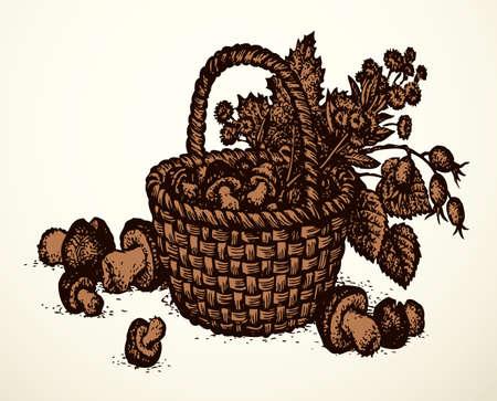 Outline black ink hand drawn antique rough cane twig craft braid picnic cep hip dish bast  emblem ancient doodle pencil cartoon art engrave style. Closeup still life view white text space backdrop