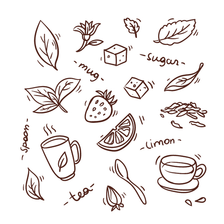set tea cup sketch design hand draw background