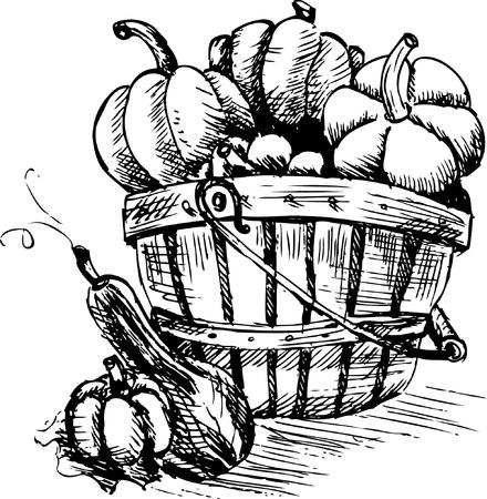 crackling: Pumpkins in a bucket Illustration