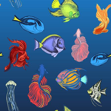 Vector hand drawn sketch Card with aquarium fish. Discus, Scalaria, Zanclidae, Paracanthurus hepatus.