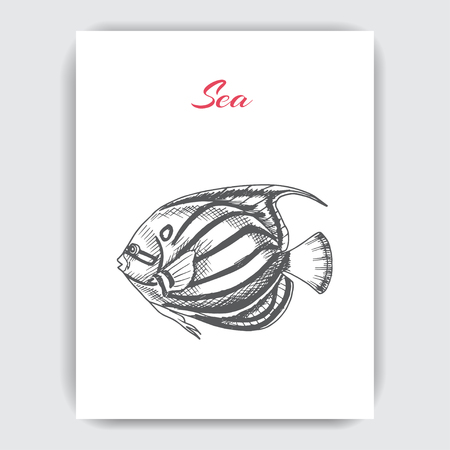 Vector hand drawn sketch Card with aquarium fish.