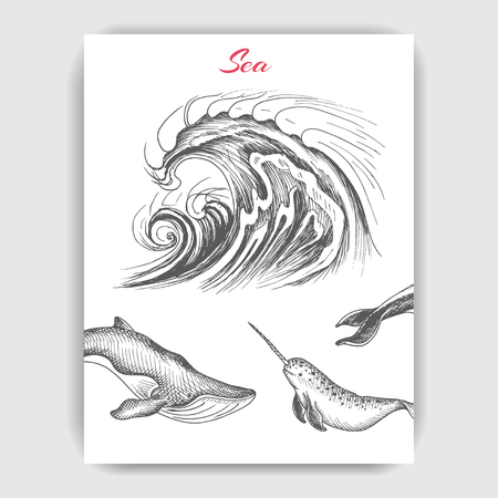 Card with hand drawn sketch whale, wave.