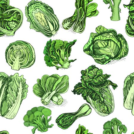 Vector pattern vegetable. Illustration cabbage.