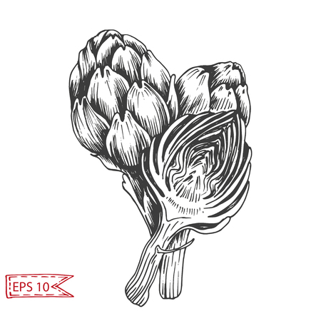 Illustration pattern vegetables - tomato, peas, beans, cabbage, broccoli, onion, lettuce, leek, eggplant, artichoke, vegetables. Background for card menu restaurant.