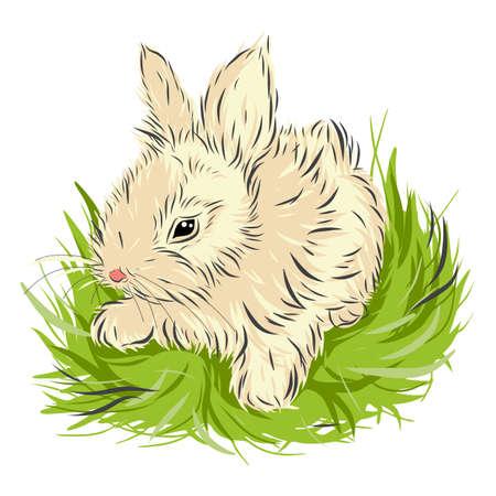 Painted easter kleines Kaninchen sitzt im grünen Gras. Häschen-Skizze auf weißem Hintergrund