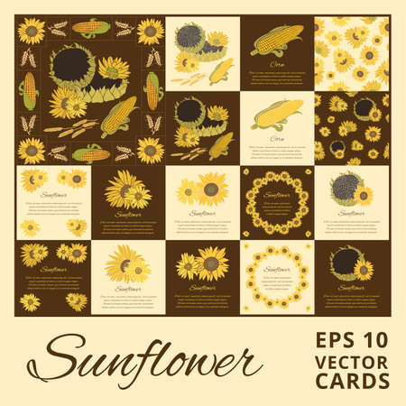 halm: Sunflower greeting card set. Yellow vector flowers on the bright background collection