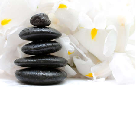 Black stones and white flowers, alternative medicine and treatment concept Stock Photo