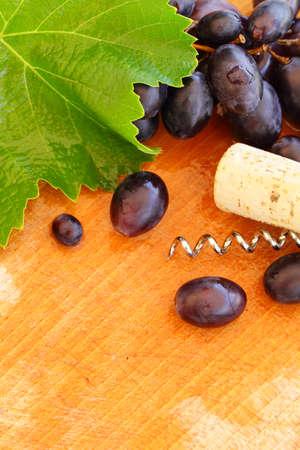 grapevine: Wine border with grape and grapevine