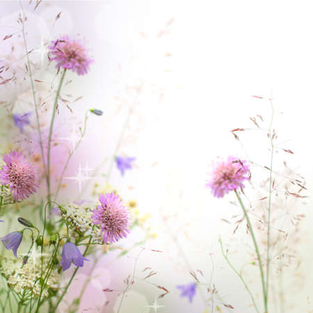 Beautiful pastel floral border beautiful blurred background (shallow depth of field)
