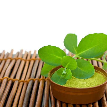 spa mud: Spa background with mud and green leaves on bamboo mat Stock Photo