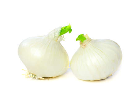onion isolated: Beautiful Onion Isolated on White