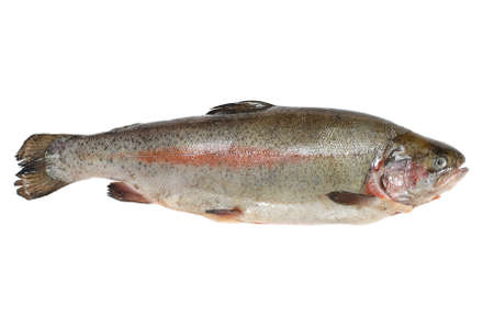 omega3: Trout fish containing omega-3 isolated on white