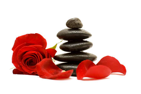 Red flower and black stones isolated Stock Photo