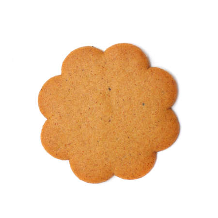 spicecake: sweet brown cookie isolated on white background