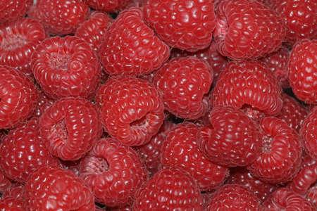 organic raspberry: Ripe fresh organic raspberry. Background.