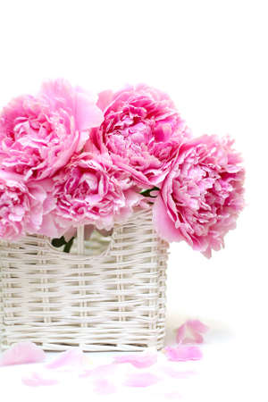 valentines day mother s: Romantic bouquet. Delicate pink peonies isolated on white background