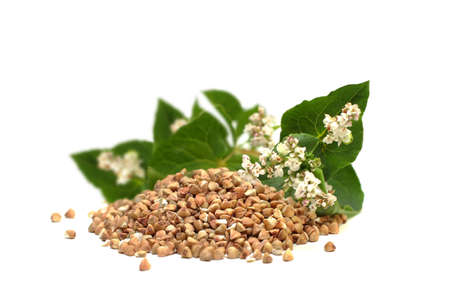 Buckwheat grains and green leaves isolated, superfood concept